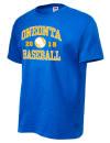 Oneonta High SchoolBaseball