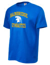 Bainbridge High SchoolGymnastics