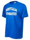 Montcalm High SchoolGymnastics