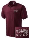 Moline High SchoolGolf