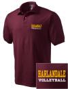 Harlandale High SchoolVolleyball