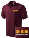 Big Horn High SchoolCheerleading