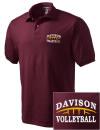 Davison High SchoolVolleyball