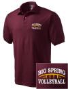 Big Spring High SchoolVolleyball