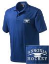 Ansonia High SchoolHockey