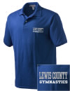 Lewis County High SchoolGymnastics