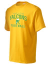 Falcon High SchoolFootball