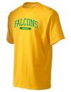 Falcon High SchoolTrack