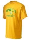 Dundalk High SchoolHockey
