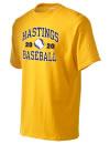 Hastings High SchoolBaseball
