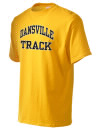 Dansville High SchoolTrack
