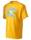 Caledonia High SchoolSoftball