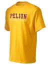 Pelion High SchoolBasketball