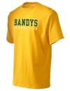 Bandys High SchoolGymnastics