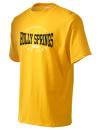 Holly Springs High SchoolArt Club