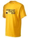 Cedar Cliff High School