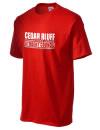 Cedar Bluff High SchoolStudent Council
