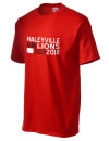 Haleyville High School