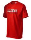 Allendale High SchoolGymnastics