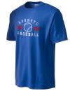 Hundred High SchoolBaseball