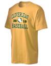 Cloverleaf High SchoolBaseball
