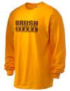 Brush High SchoolDrama