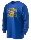 Clay County High SchoolGymnastics